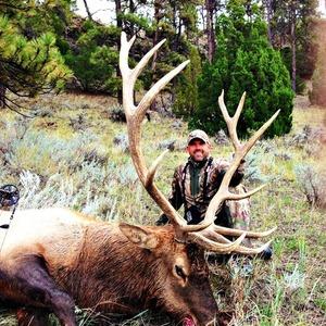 Lee's Montana Elk
